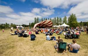 Best Indoor and Outdoor Festivals
